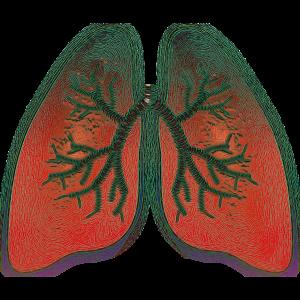 Stop & Breathe - Online - 20 mins @ Online - Zoom